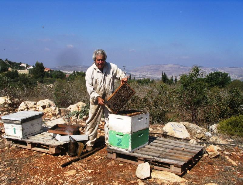 מתוק מדבש. הדבוראי רוקי רק|צילום: באדיבות מכוורת מכמנים